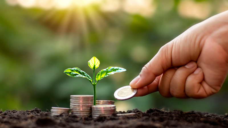 ESG: mais que sustentabilidade, um investimento